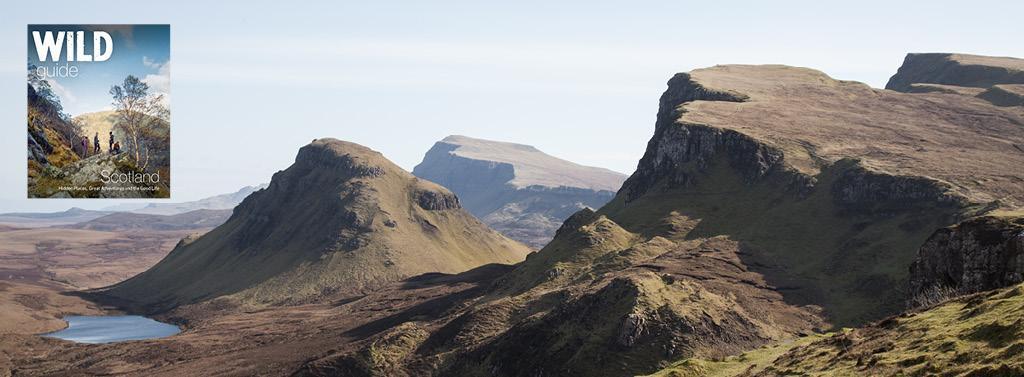 wild guide scotland ad